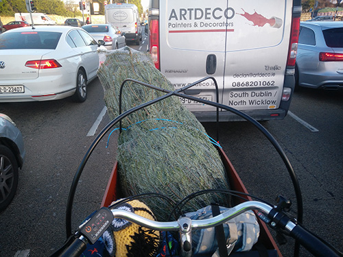 Cargo bike in Dublin traffic