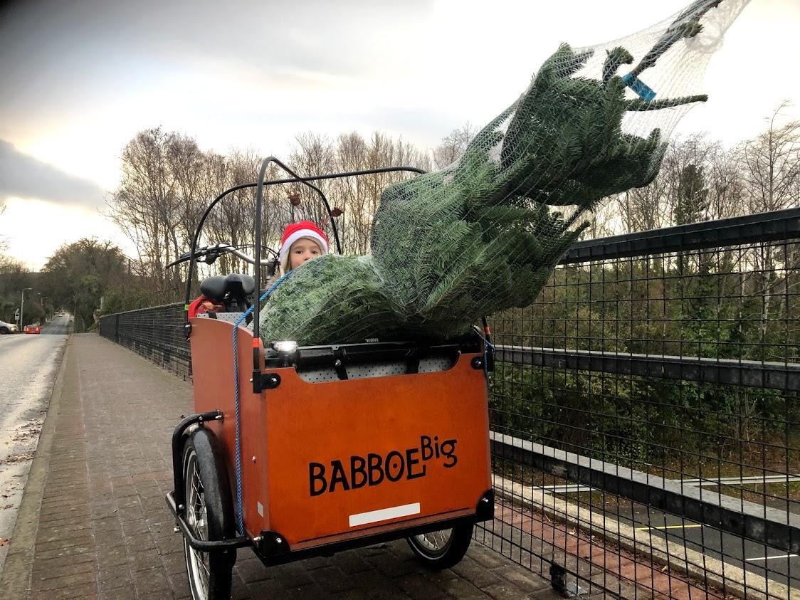 Ho, ho, ho! It's Christmas tree time!